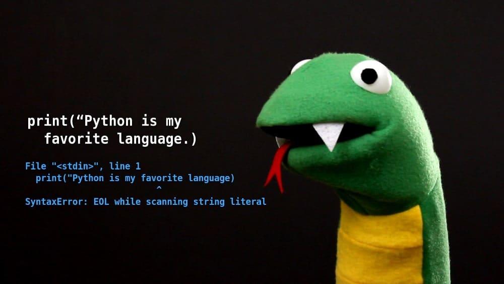 Python Quote Green Stuffed Snake